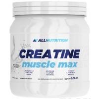 Allnutrition - Creatine Muscle Max - 500 г