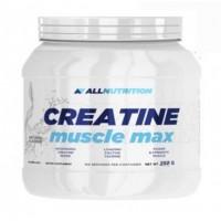 Allnutrition - Creatine Muscle Max - 250 г