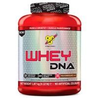 BSN – Whey DNA – 1870 г